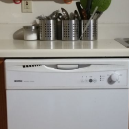 river-vs-dishwasher